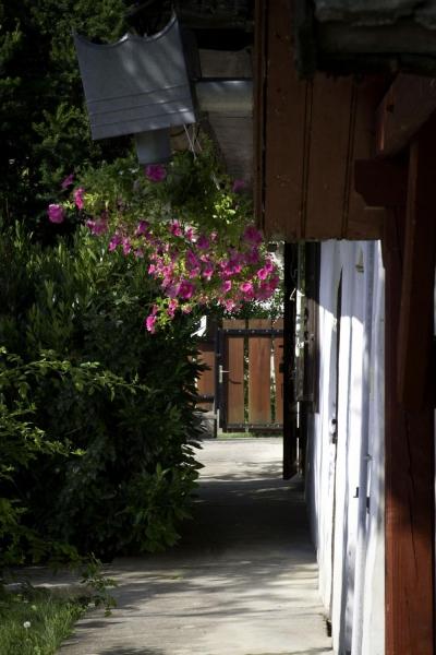 Muskátli parasztház-Vértesboglár