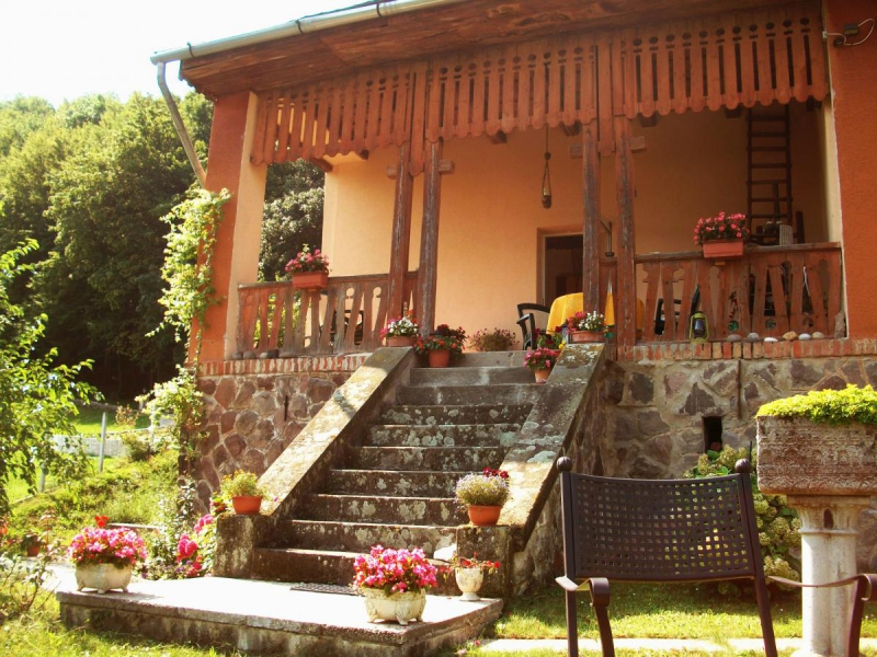 Villa Panorama Artist-Dömös