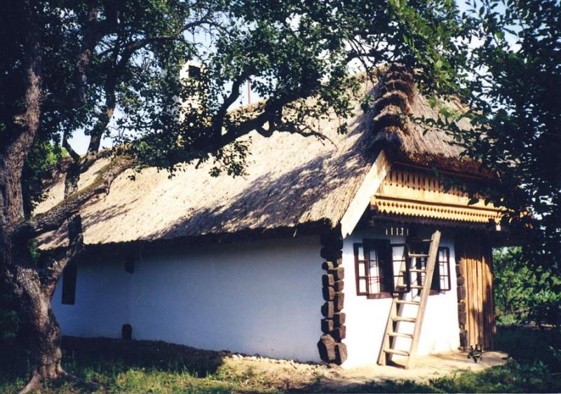Zsúpfedeles Házikó - Népi műemlék parasztház